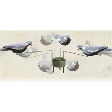 giostra_pigeon