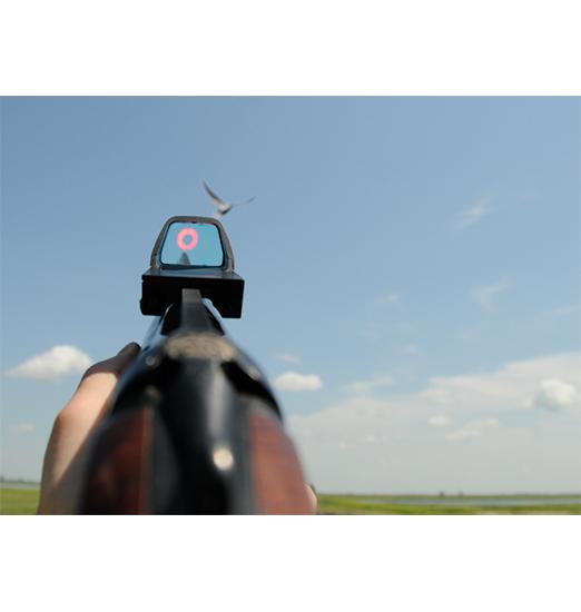 photo-redring-redring-sight-viseur-point-rouge-nouvelle-generation-pour-fusils-de-chasse-disponible,874,1