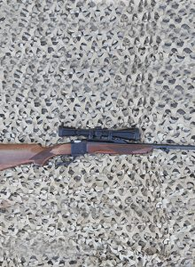 ruger single shot